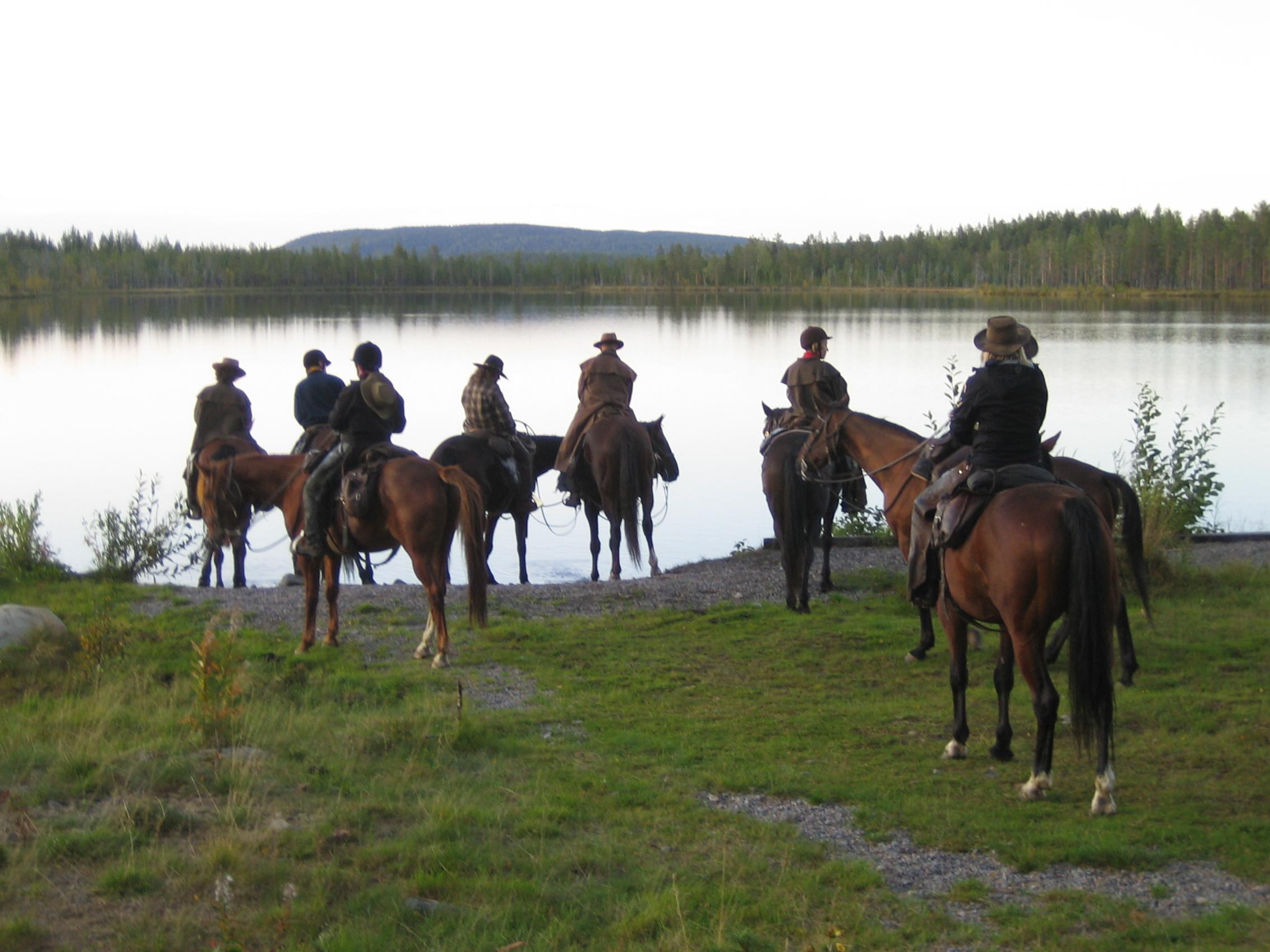 häst dating hem sida