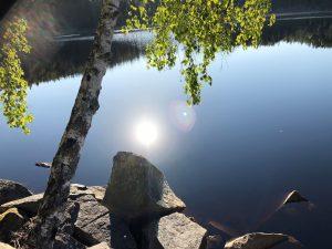 BOLLNÄS ridsällskap Hoppning / Dressyr / terrängbana