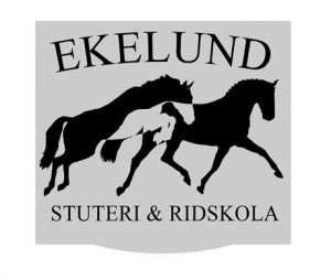 Ekelunds Stuteri hoppkurs 18-19 jan 2020